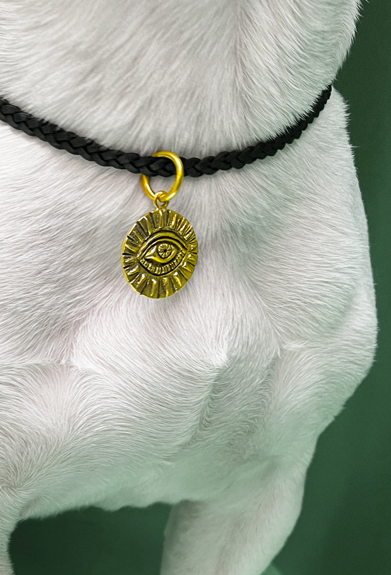 All Seeing Eye Brass Dog Charm