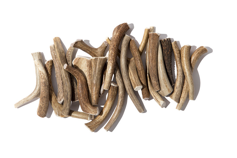 Natural Antler Chew Toys - Mr. Dog New York