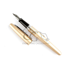 Pilot Metropolitan Classic (Black, Gold and Silver)