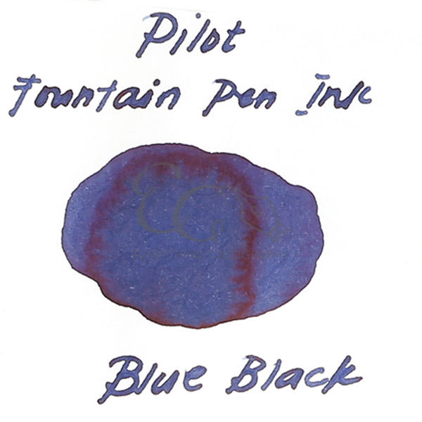 Pilot Fountain Pen Ink (30ml)