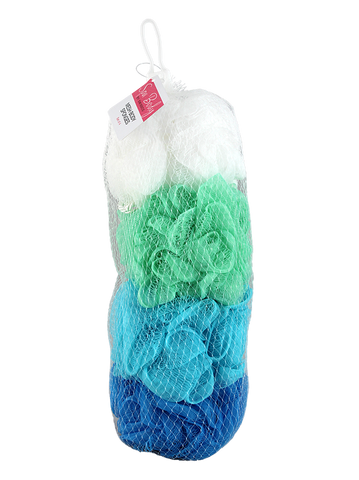 Spa Body 4pc Mesh Sponge in Net Bag