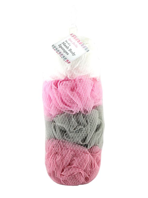 4PC MESH SPONGE IN NET BAG