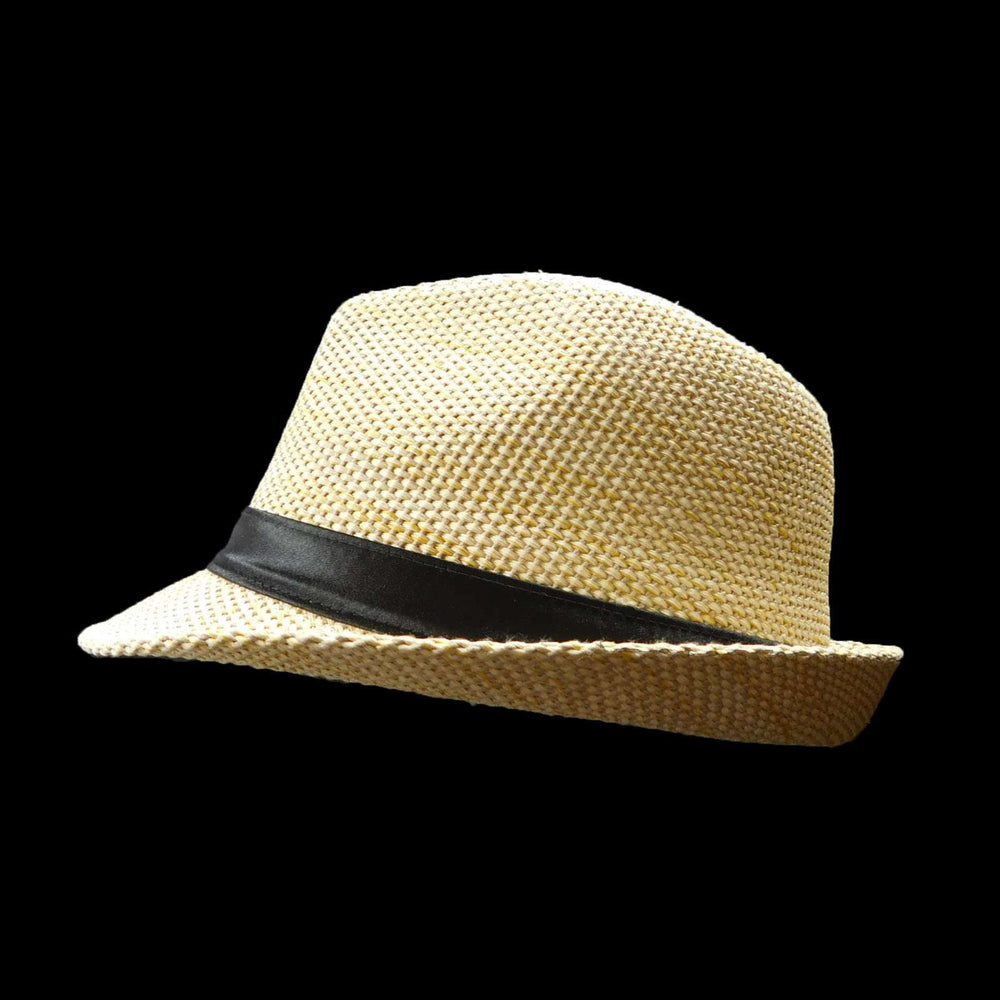 Fedora/Trilby with Black Band - SetarTrading Hats