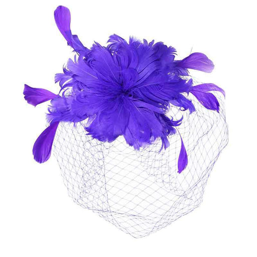 Birds of Feather Fascinator with Full Netting Veil - SetarTrading Hats