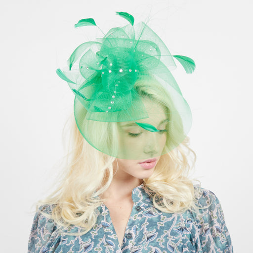 Artsy Feather and Rhinestone Mesh Fascinator - Something Special