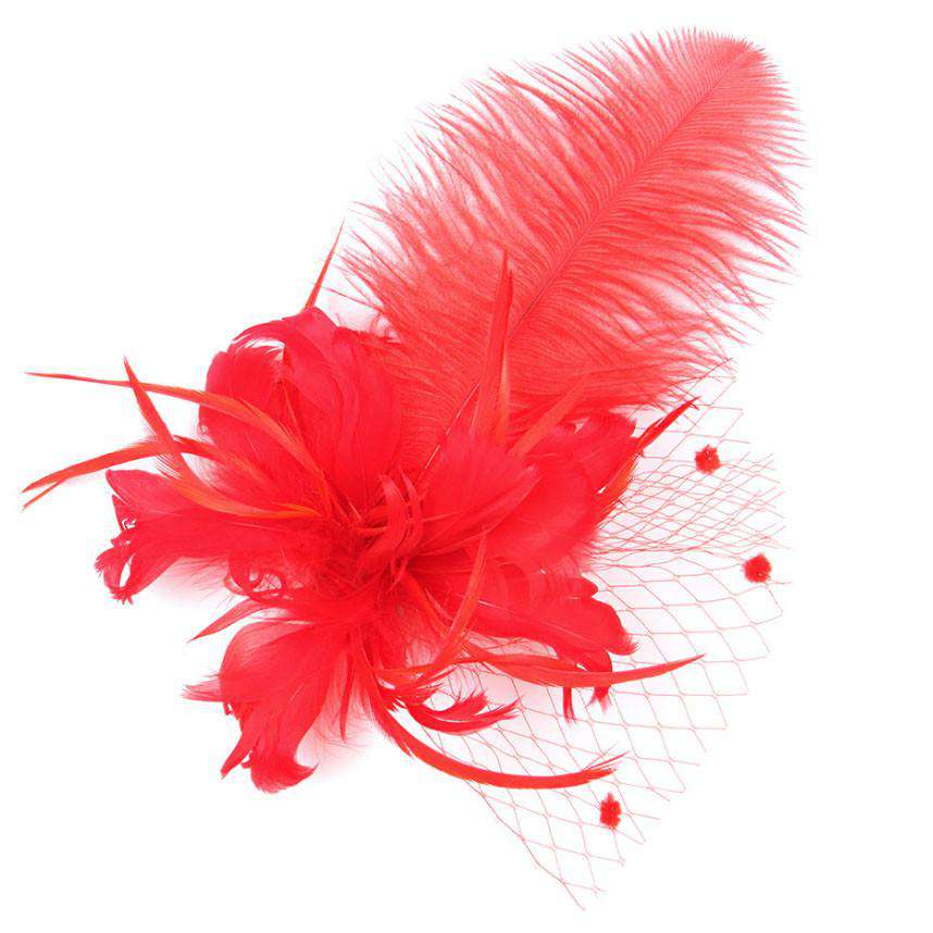 Plume Hair Fascinator-Brooch - SetarTrading Hats