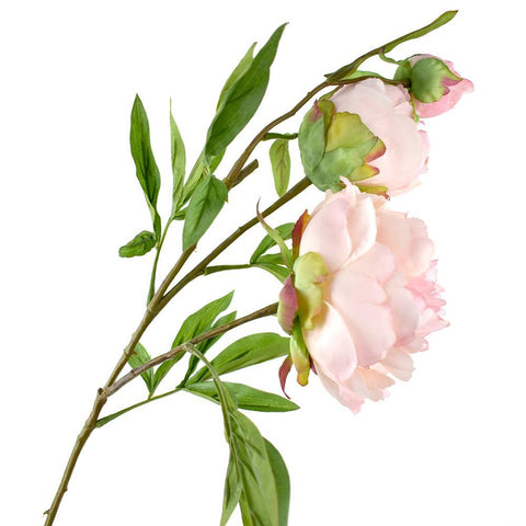 Blooming Silk Peony Spray Branch, 28-Inch, Misty Rose