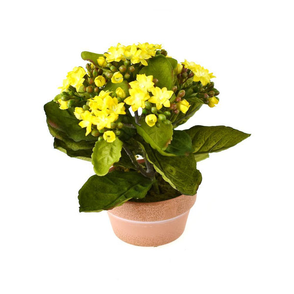 Artificial Silk Kalanchoe Flower Pot, Yellow, 8-Inch