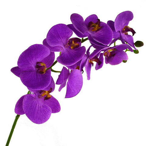Deluxe Artificial Orchid Stem, 31-Inch, Purple