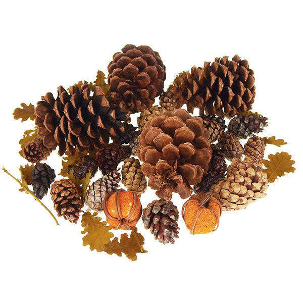 Dried Scented Pine Cones Natural Forms with Mini Pumpkins, 40-Piece
