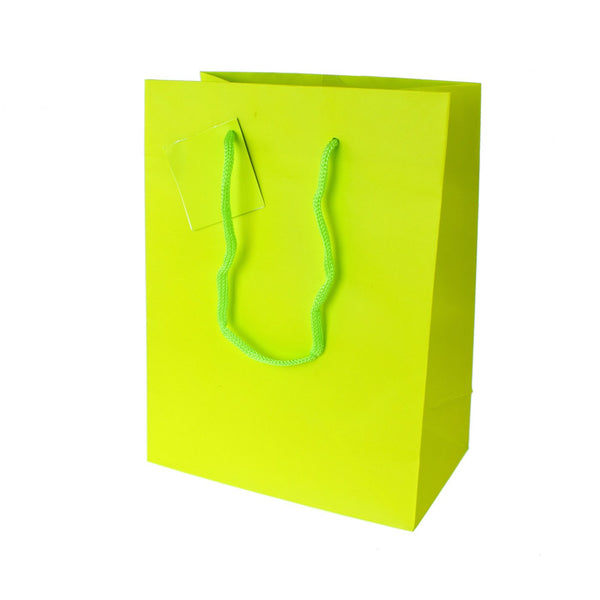 Solid Colored Matte Gift Bags with Tag, 9-1/2-Inch, Apple Green