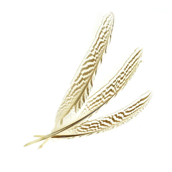 Long Loose Striped Quill Feathers, Ivory, 3-Piece