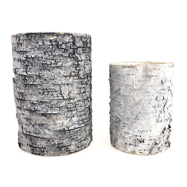 Natural Birch Wood Vase Container, 6 & 7-Inch, 2-Piece