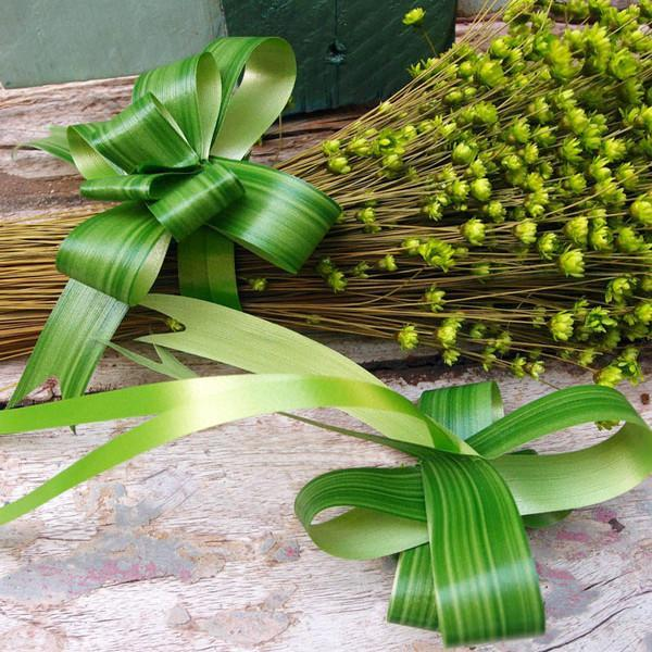 Waterproof Leaf Pull Bow, Aspidistra Green, 7/8-Inch x 10 feet