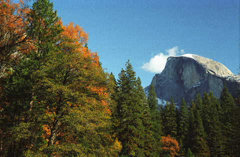 Half Dome in the Fall 8X10 Matted Photo Yosemite National Park