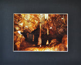 Infinite Depths 8X10 Matted Photo Oregon Caves National Park
