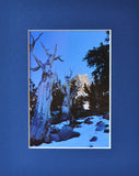Life After Death 8X10 Matted Photo Southwest Great Basin National Park