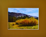 Meadow Magic 8X10 Matted Photo Devils Postpile National Monument