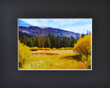Mountain Meadow 8X10 Matted Photo Devils Postpile National Monument