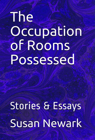 E-Book The Occupation of Rooms Possessed Stories & Essays 1985-2015 Humor Nonconformity Cultural Commentary