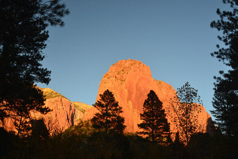 Sunset on the Rocks 8X10 Matted Photo Southwest Zion National Park