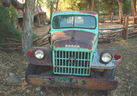 The Old Dodge 8X10 Matted Photo Antique Cars Vehicles Pickup Truck Boyce Thompson Arboretum