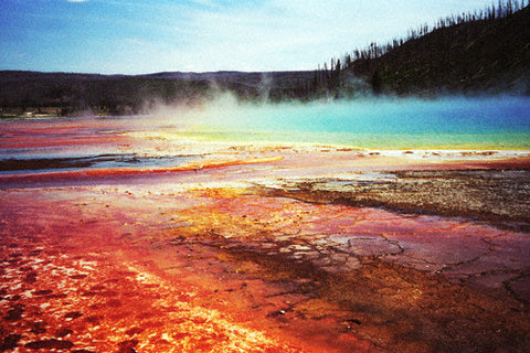 Volcanic Hues Grand Prismatic Spring 8X10 Matted Photo Yellowstone National Park Pools/Hot Springs