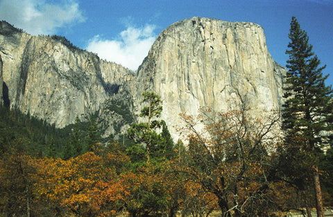 El Capitan 8X10 Matted Photo Yosemite National Park