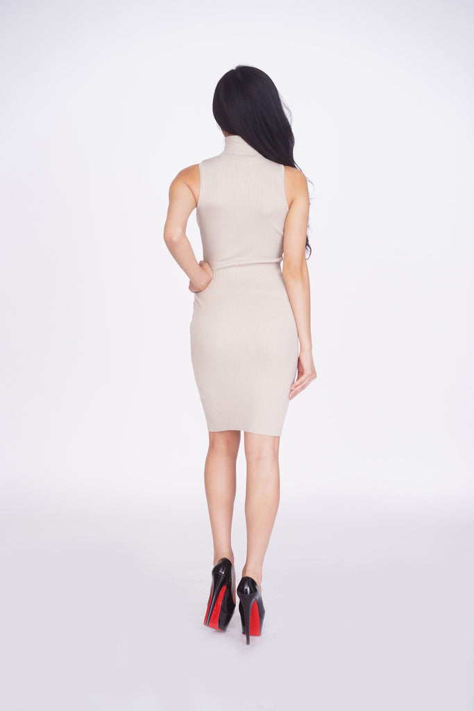 Aimee Ribbed Turtleneck Dress -dresses
