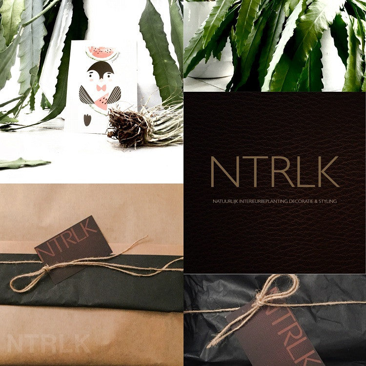 NTRLK GIFTS Collection