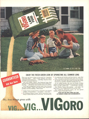 Vigoro Lawn Food LIFE March 21 1960