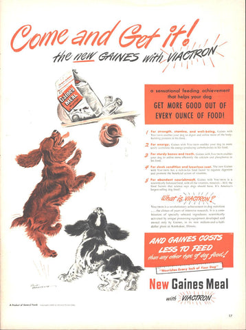 Gaines Meal Dog Food Page LIFE February 23 1948