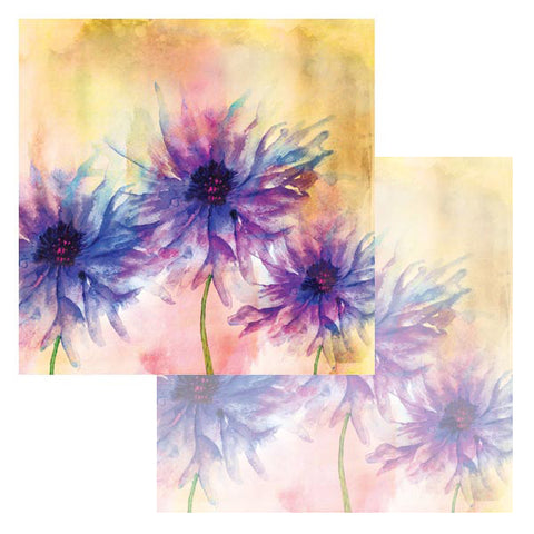 Ken Oliver Watercolor Florals 12x12 Paper - Asters