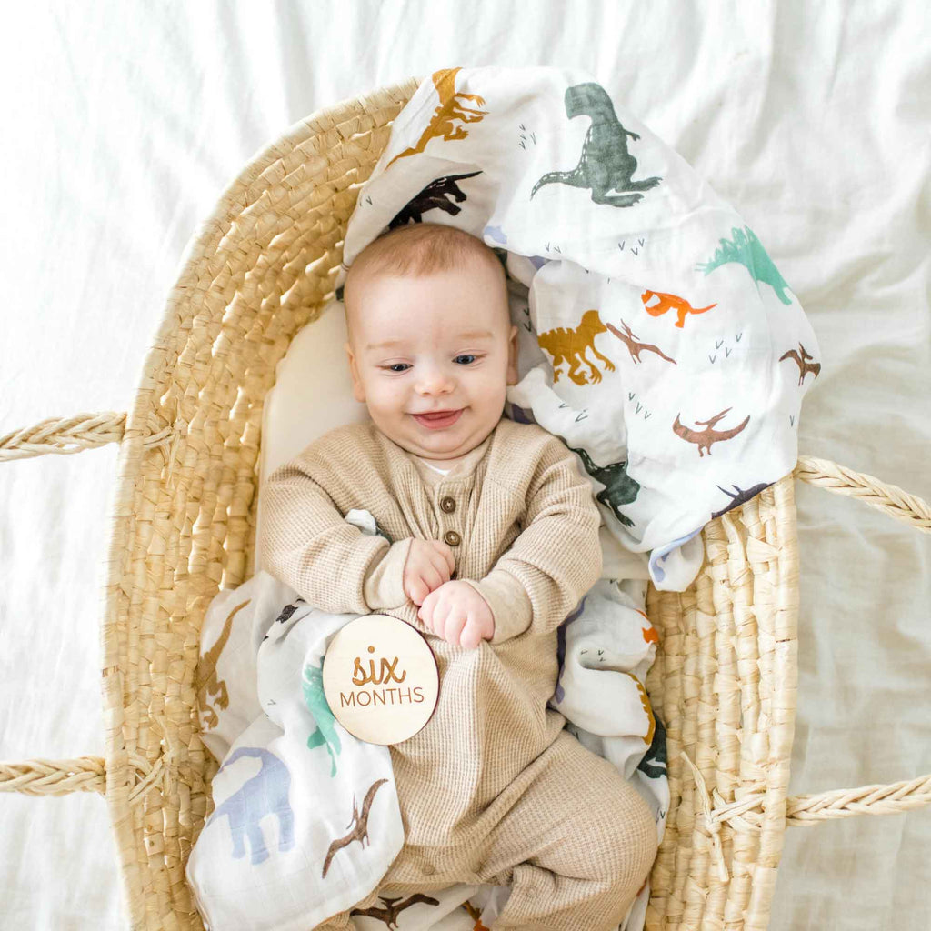 dinosaur baby swaddle, dino muslin blanket, baby boy swaddle, receiving blanket