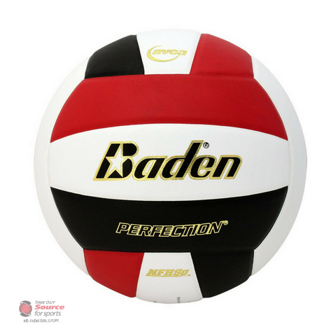 Baden VX5EC Perfection Leather Volleyball