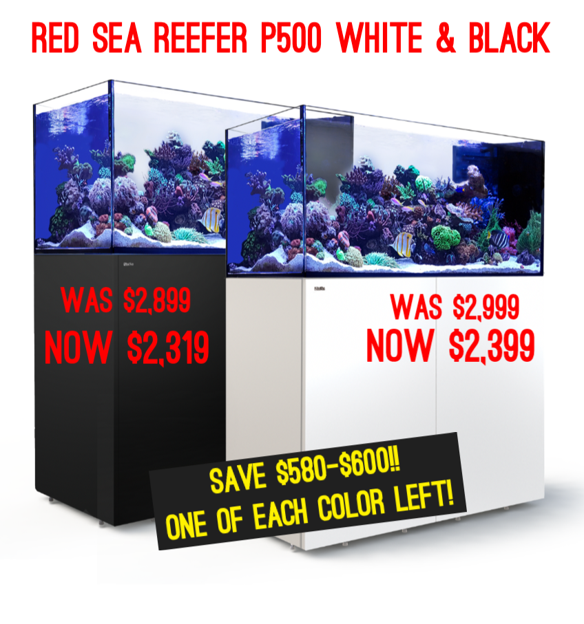 Clearance RED SEA tanks & more!!