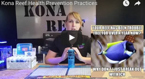 Health Prevention Practices at the Store