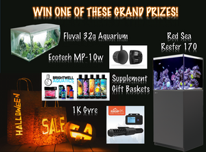 Halloween SALE in full swing! One grand prize already won!