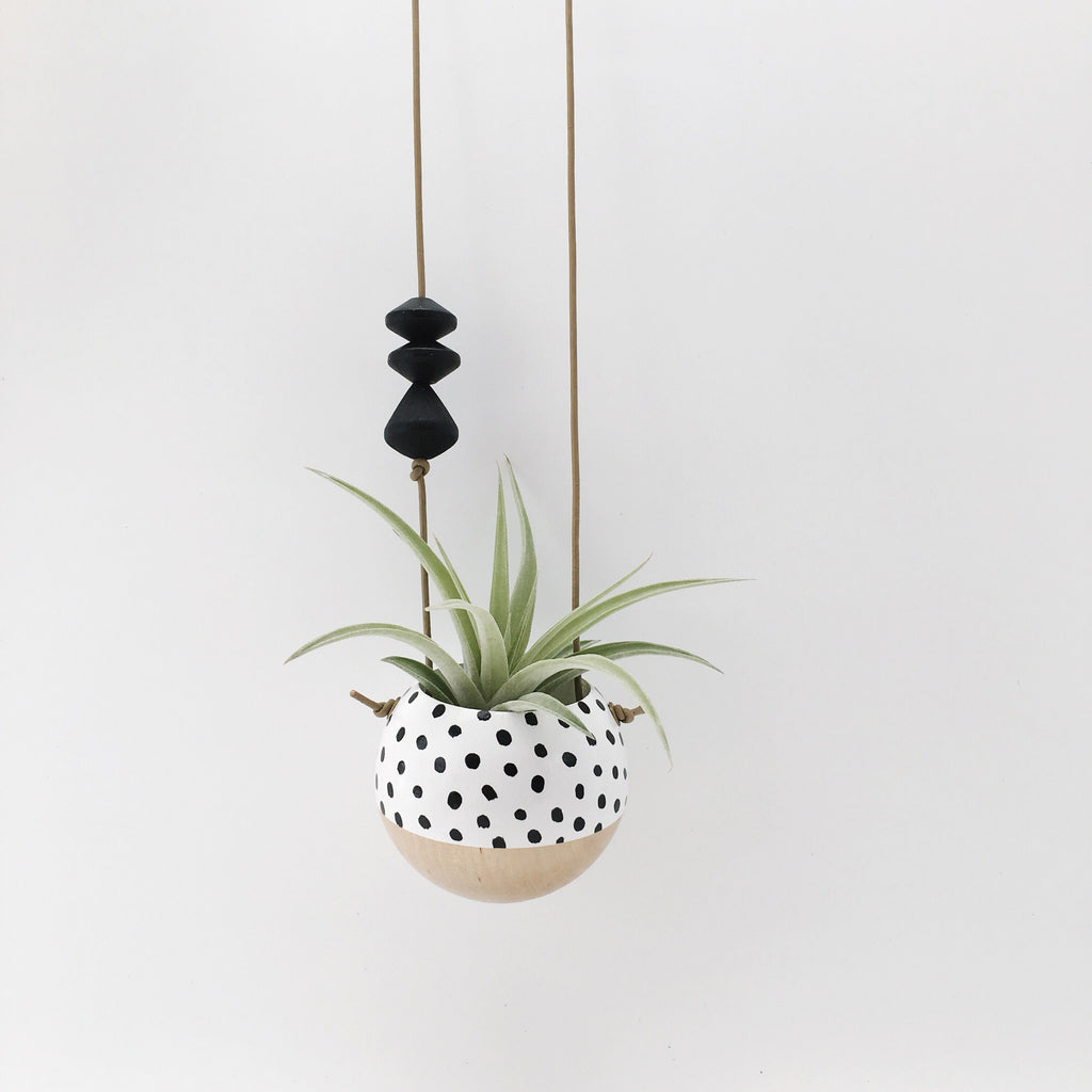 Mini Hand-Painted Hanging Planters // B+W Speckle