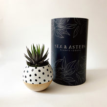 Load image into Gallery viewer, White + Black Speckle Sphere Planter