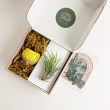 Load image into Gallery viewer, Mini Hanging Planter // Yellow