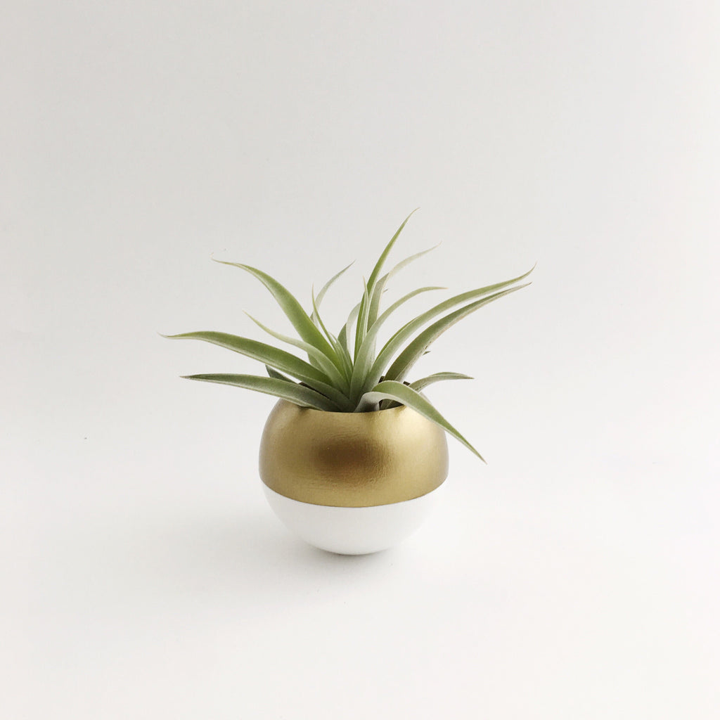 Sphere Pod Planter // Gold + White