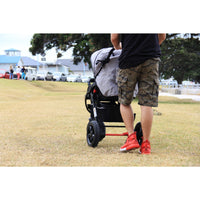 Allforkiddies Stroller Lion Collection - Baby Style - 12