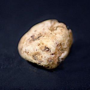 White Truffles from Alba