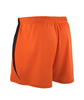 Arroyo Short