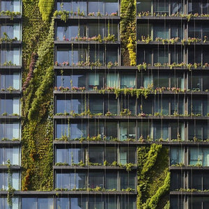 WHY VERTICAL GARDENS ARE THE MODERN-DAY MUST HAVE