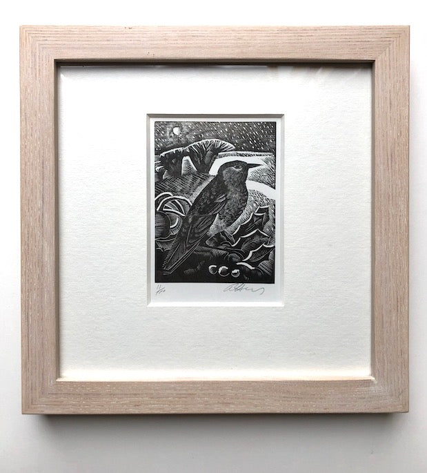R for Robin Framed