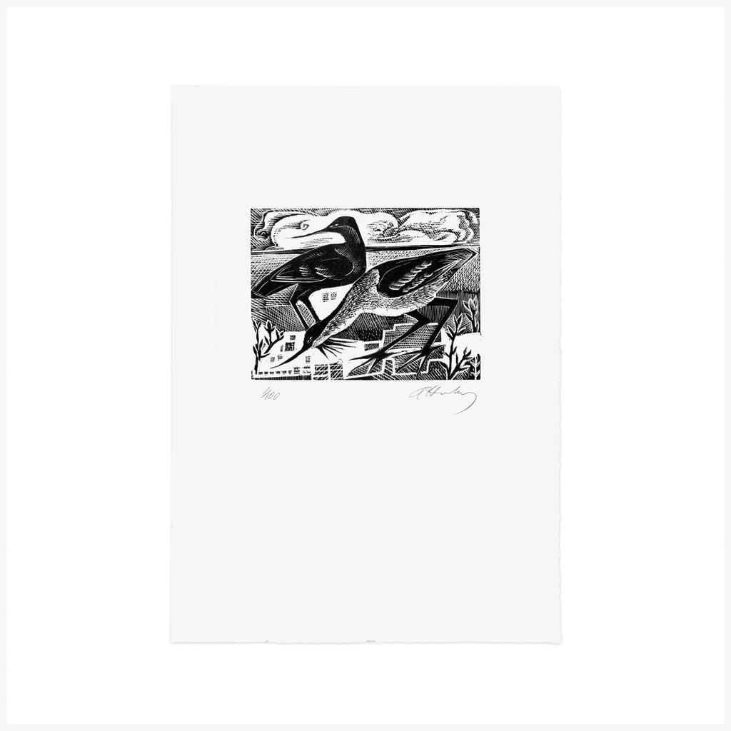 A is for Avocets - Wood Engraving - Angela Harding