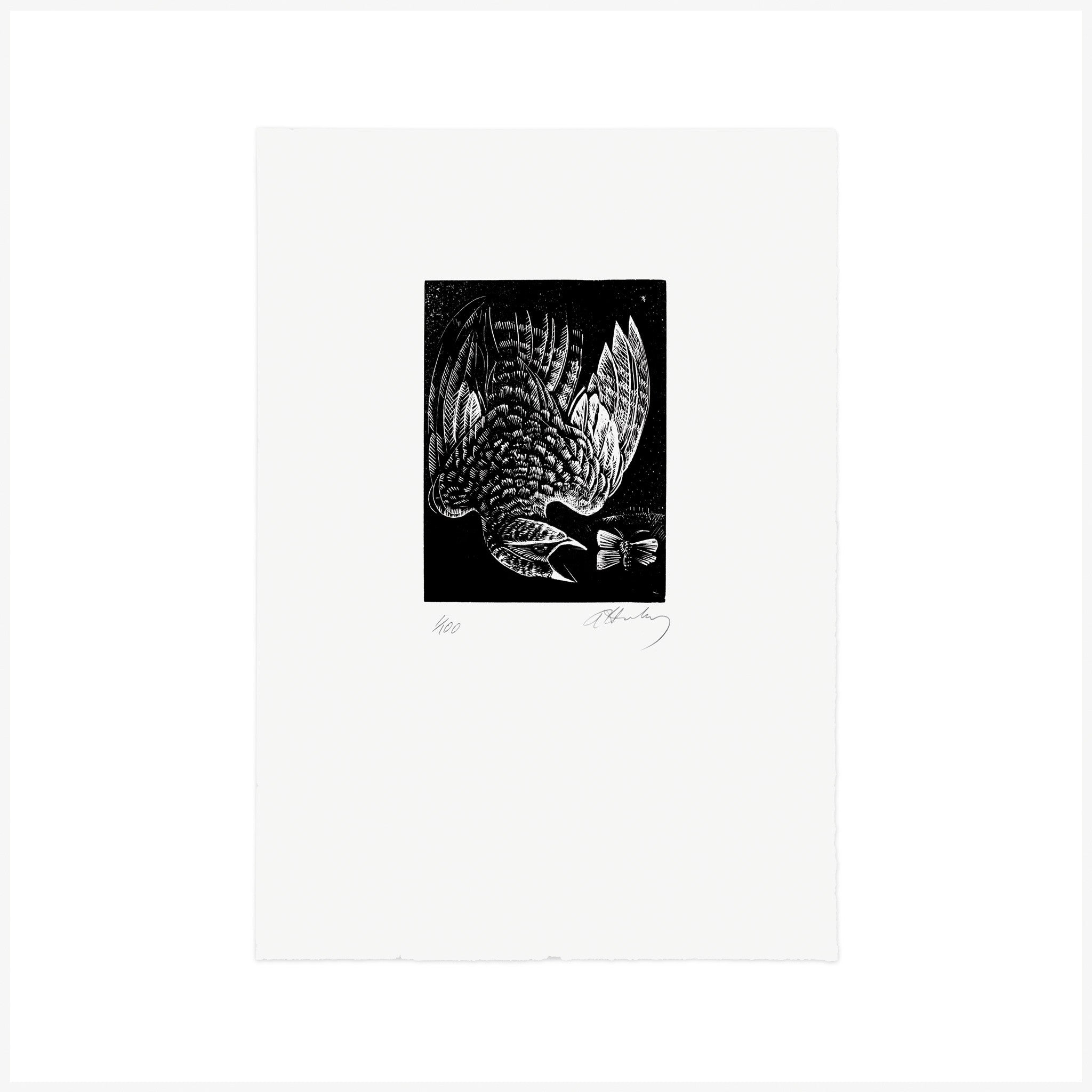 N is for Nightjar, Wood Engraving by Angela Harding