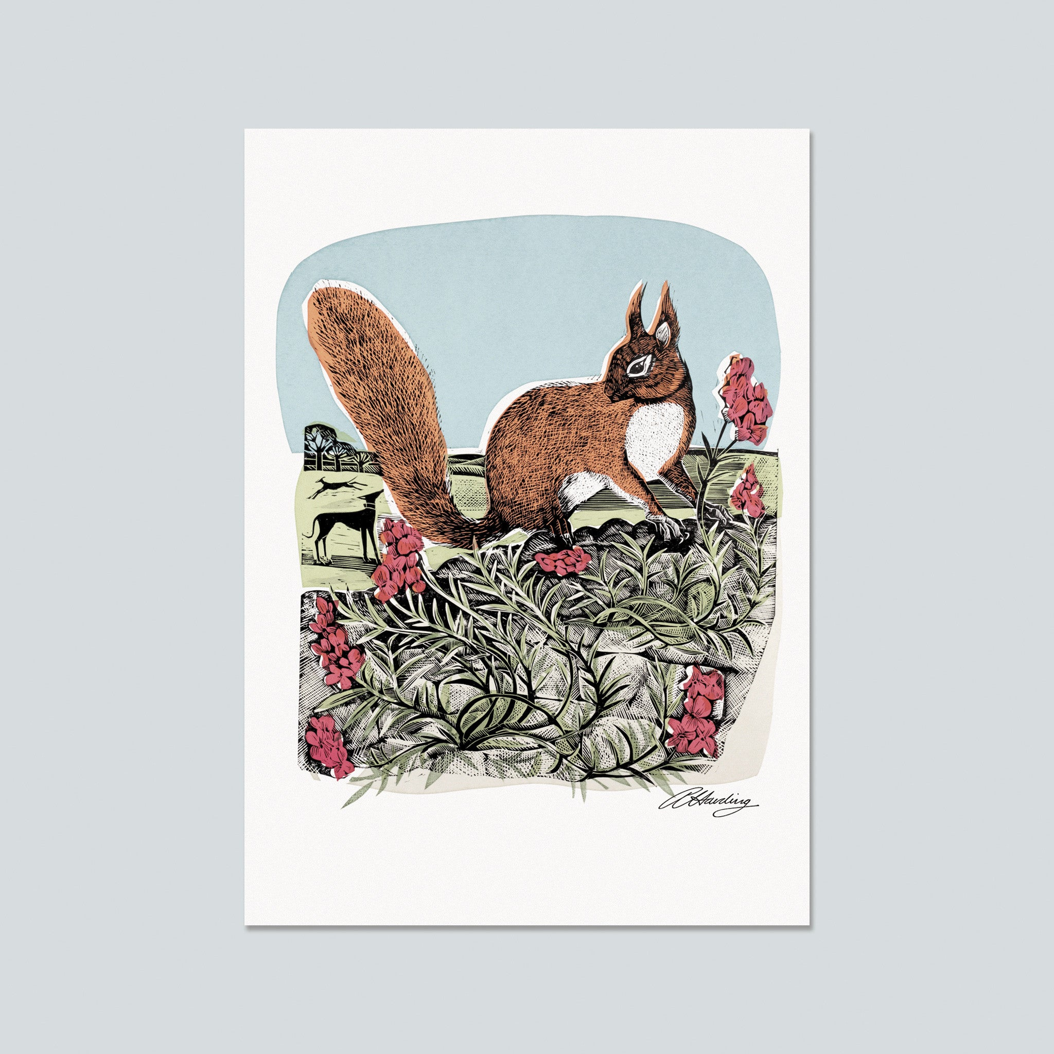 Red Squirrel and Wall Flower Postcard by Angela Harding
